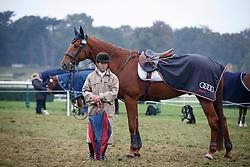 Teulere Jean, FRA, Vesubio<br /> World Championship Young Eventing Horses<br /> Mondial du Lion - Le Lion d'Angers 2016<br /> © Hippo Foto - Dirk Caremans<br /> 23/10/2016
