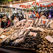 Fresh fish and seafood for sale at Mercado Central de Santiago, Chile's central market. The market specializes in seafood, a staple food category of Chilean cuisine. The building is topped with an ornate cast-iron roof.