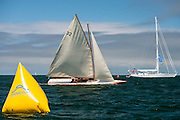 Tilly XV sailing in the Nantucket Opera House Cup.