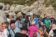 https://Duncan.co/african-penguins-at-boulders-beach
