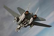 F-14B with full Phoenix loadout