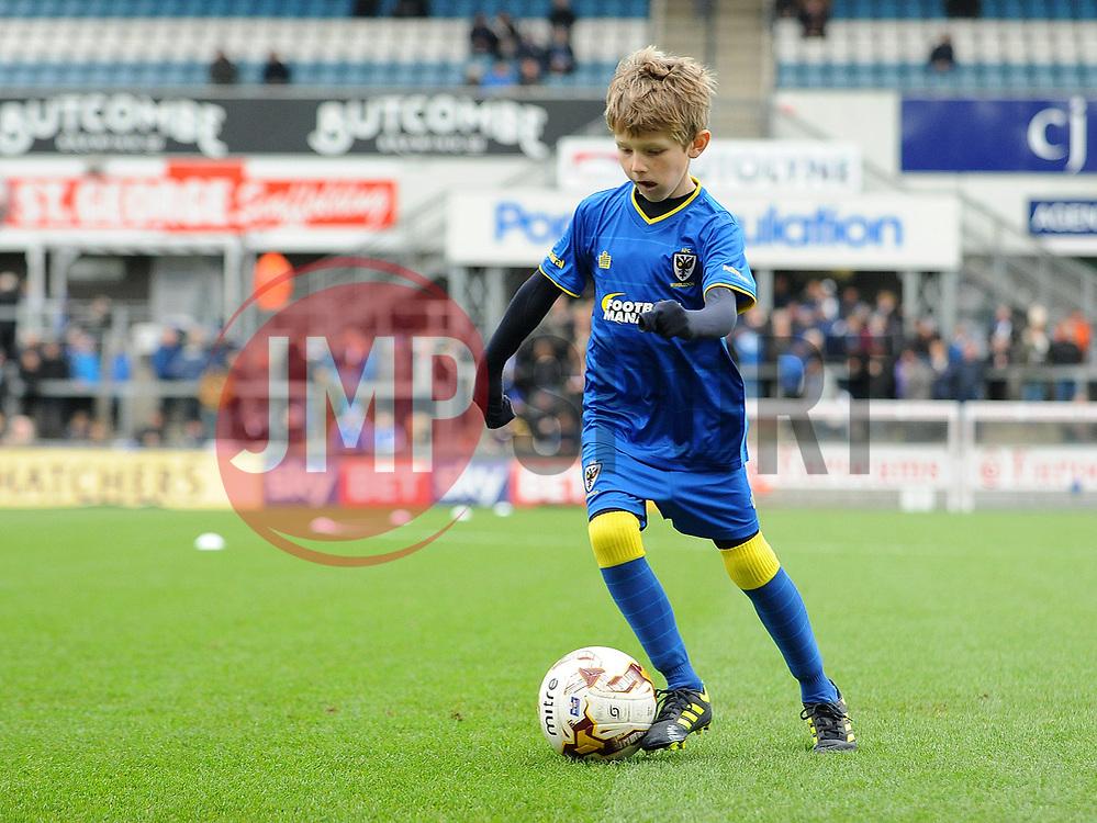 Mascot - Mandatory by-line: Neil Brookman/JMP - 18/11/2017 - FOOTBALL - Memorial Stadium - Bristol, England - Bristol Rovers v AFC Wimbledon - Sky Bet League One