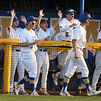 The Tupelo dugout celebrates after they go up 3-0 in the first inning against Warren Central Thursday night.