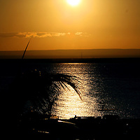 La Paz, B.C.S.- Corredor turistico en el malecon de la Paz, Baja California Sur. Agencia MVT / Mario Vazquez de la Torre. (DIGITAL)<br /> <br /> <br /> <br /> <br /> <br /> <br /> <br /> NO ARCHIVAR - NO ARCHIVE