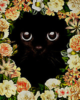 Enjoy a touch of flower power, while taking in your love of all things cats and kittens. This illustration by Jan Keteleer combines a charming, playful kitten with a plethora of lovely flowers. It is not difficult by any means to imagine this scene. With this fine art piece, you can enjoy its beauty and warmth whenever you please. –<br />