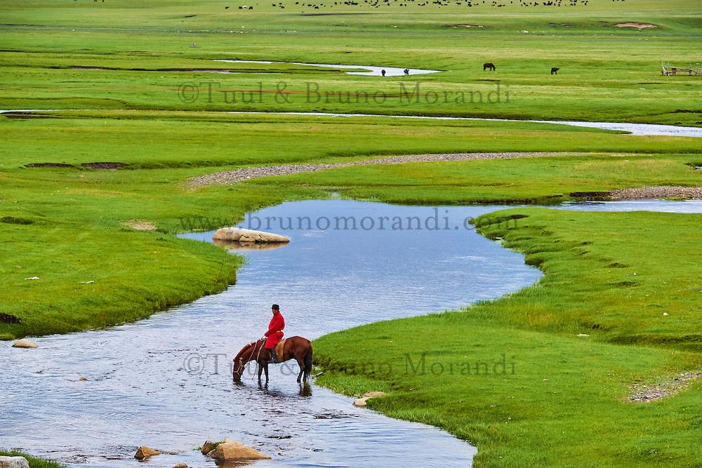 Mongolie, Arkhangai, cavalier mongol // Mongolia, Arkhangai province, Mongolian horserider in the steppe