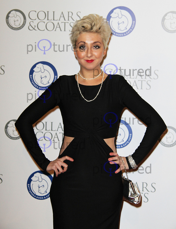 Rosamund Hanson Battersea Dogs & Cats Home Collars & Coats Gala Ball, Battersea Evolution, London, UK. 11 November 2011. Contact rich@pictured.com +44 07941 079620 (Picture by Richard Goldschmidt)