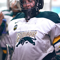 4th year goalie, Jane Kish (31) of the Regina Cougars during the Women's Hockey Home Game on Sat Feb 02 at The Co-operators Arena. Credit: Arthur Ward/Arthur Images