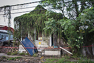 Vine covered blighted home nearly 10 years post-Katirna in New Orleans.