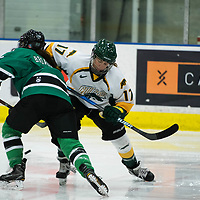 2nd year forward Lilla Carpenter-Boesch (17) of the Regina Cougars in action during the Women's Hockey Homeopener on October 7 at Co-operators arena. Credit: Arthur Ward/Arthur Images