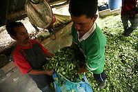 Coca pickers weigh their bags of freshly picked coca leaf at a lab before the process of turning the leaf into coca paste begins, in a remote area of the southern Colombian state of Nariño, on Monday, June 25, 2007. Although government efforts to eradicate coca have reached many parts of Colombia, still the coca business thrives. (Photo/Scott Dalton)