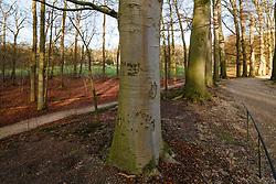 Soestdijk, Baarn, Utrecht, Netherlands