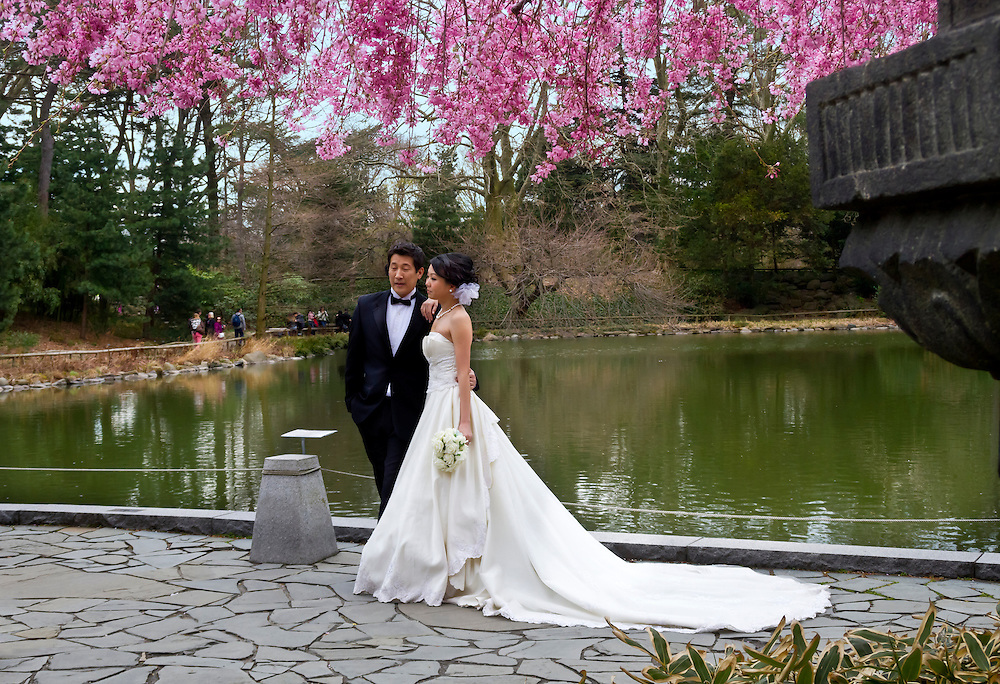 Wedding couple at the Japanese Gardens in early Spring.
