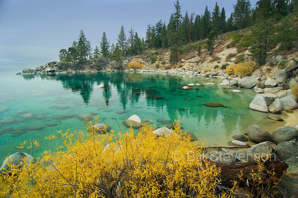 """An image of yellow fall foliage at Secret Cove on the east shore of Lake Tahoe. """"Secret"""" Cove is a popular beach when the weather is pleasant and warm but is empty and a landscape photographer's paradise at other times. It is possible to get good scenic photos here at almost any time because of the beautiful symmetric shape of the bay , the clear water and the rocks. If your goal is fine-art photography this is a great spot."""