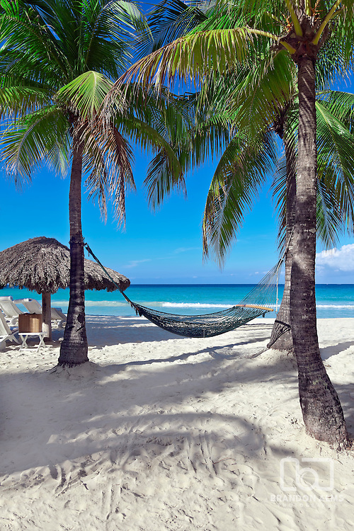 A hammock between two palm trees beside the ocean on a tropical resort.