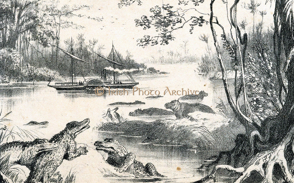 David Livingstone (1813-1873) Scottish missionary and African explorer. Livingstone's steamer 'Ma-Robert' on a crocodile infested Zambesi River. From 'The Life and Explorations of David Livingstone' c1878. Tinted lithograph