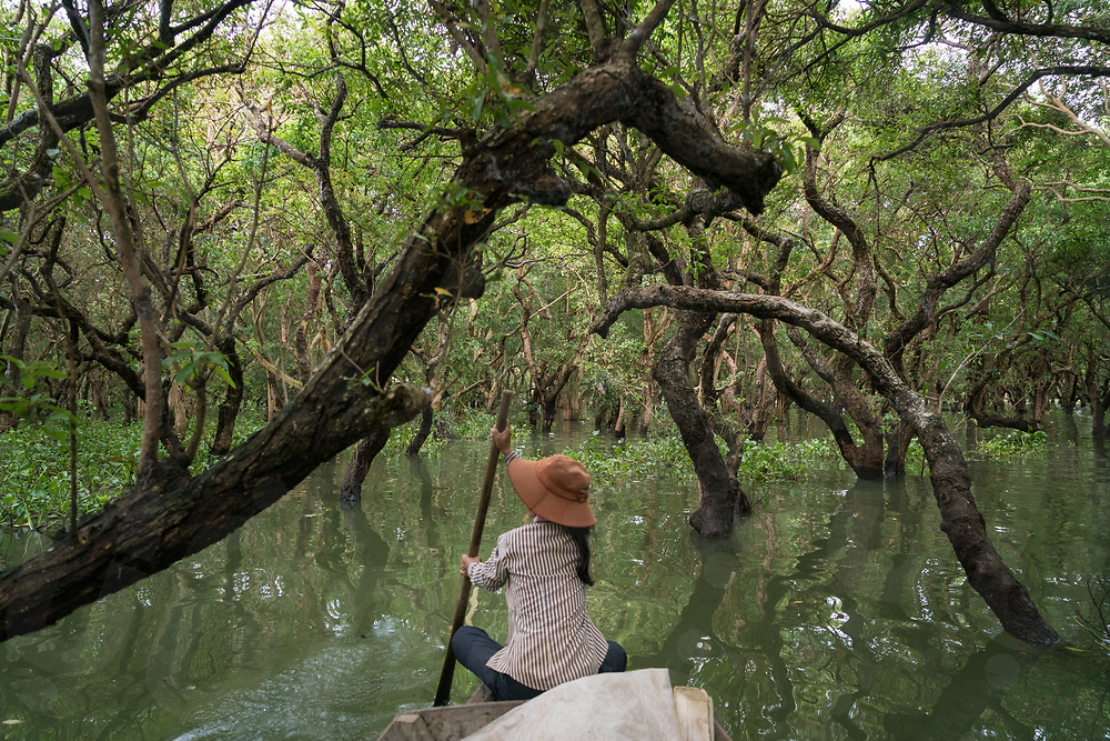 November 7, 2017 - Kep (Cambodia). A woman rows her boat through the flooded forest of Kampong Phluk. © Thomas Cristofoletti / Ruom