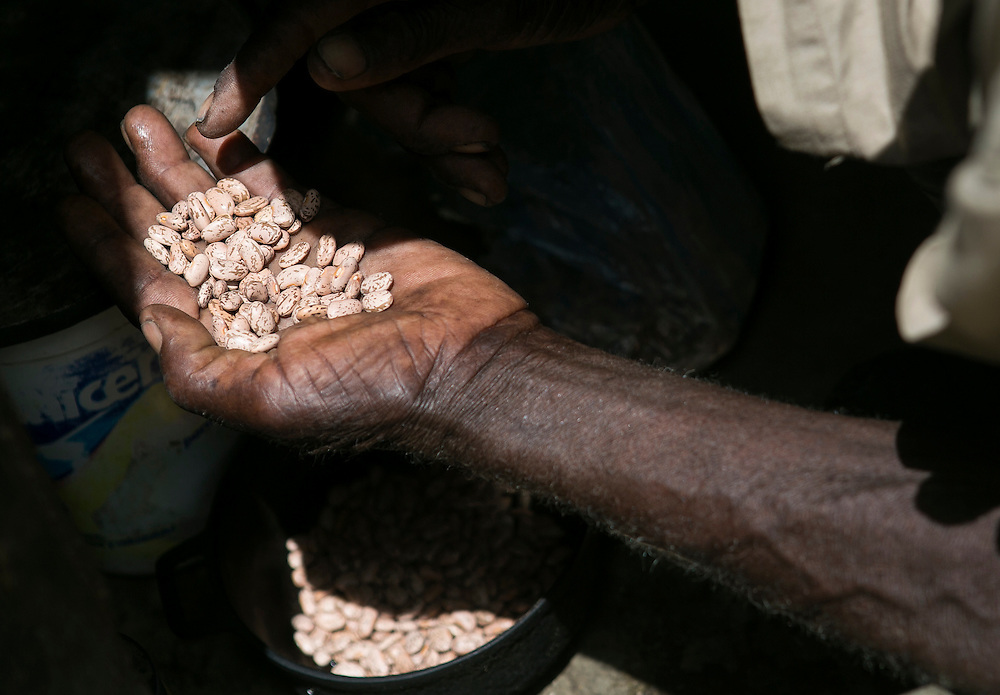 Leonor Mesille counts out the beans for his next meal on Thursday, Aug. 27, 2015 inside his home in Batey Punta Afuera, Dominican Republic. <br /> (Michelle Kanaar/ For the Miami Herald)<br /> Publication Date: Oct. 21, 2015