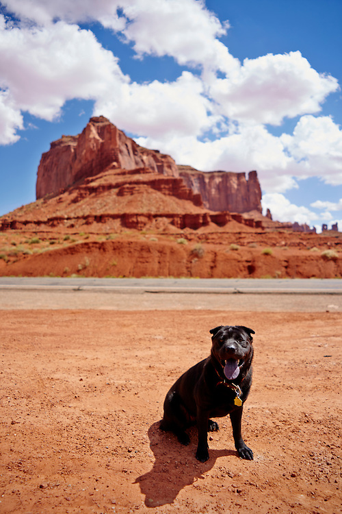 Lucy in Monument Valley