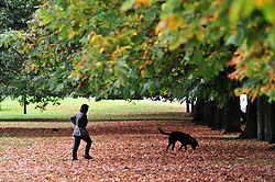 &copy; Licensed to London News Pictures.03/10/2017.<br /> GREENWICH, UK.<br /> Autumn weather at Greenwich Park,London.<br /> Photo credit: Grant Falvey/LNP