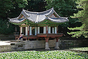 Buyong-jeon pleasure pavilion in the Biwon or secret garden in Changdeok-gung.palace. It is cantilevered over the edge of a lotus pond with two pillars in the water..The garden was first landscaped in 1623 and served for centuries as a royal retreat..Seoul, South Korea, 2007