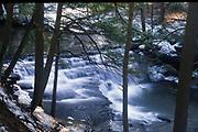 Salt Spring State Park, Winter, northern PA