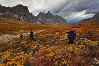 Our group embarks on a hike to our backcountry camp site in the Yukon's Tombstone Territorial park, shortly after being dropped off by helicopter.