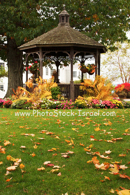 Fall coloured leaves on the green lawn in a garden a gazebo in the background