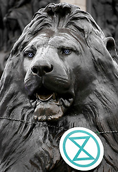 © Licensed to London News Pictures. 12/10/2019. London, UK. A lion in Trafalgar Square is decorated with Extinction Rebellion logos as activists continue their protests in central London after being moved by police from all other Westminster locations. XR activists calling on the government to act now on climate change have been protesting in the capital for six days. Photo credit: Peter Macdiarmid/LNP