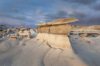 Hoodoos at Bisti Badlands, Bisti/De-Na-Zin Wilderness, New Mexico