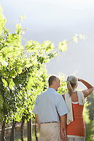 Mature couple at the vineyard back view