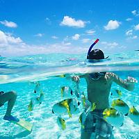 Cook Islands, K?ki '?irani, South Pacific Ocean, Aitutaki, One Foot Island, boy(s) snorkeling and feeding fish