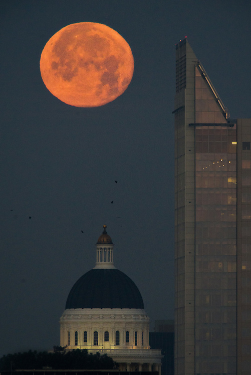 The moon sets over the downtown Sacramento and the California State Capital and turns a warm color as the crows make their way into the city, January 10, 2011.