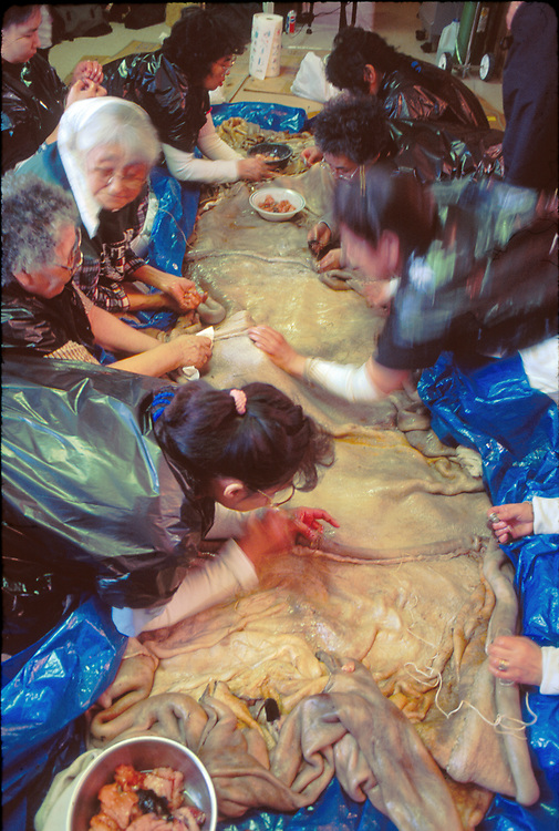 Alaska . Barrow . Women sew seal skins together for a boat .