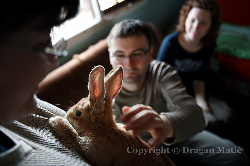 Family playing with the rabbit at cottage in the countryside.