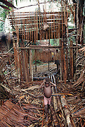 A group of loggers living in a jungle camp downriver from Sawa Village in the Asmat, a large, steamy hot tidal swamp in Irian Jaya, Indonesia. The people in this camp is logging the forest with hand axes, dragging the huge hardwood logs from deep in the forest over a long path of smaller cross logs. When they get to the river the logs are lashed together in rafts and floated down the river to sell to traders for cash or outboard boat motors. Image from the book project Man Eating Bugs: The Art and Science of Eating Insects.