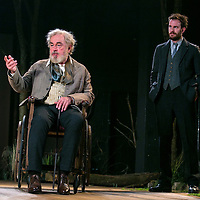 The Seagull by Anton Chekhov;<br />