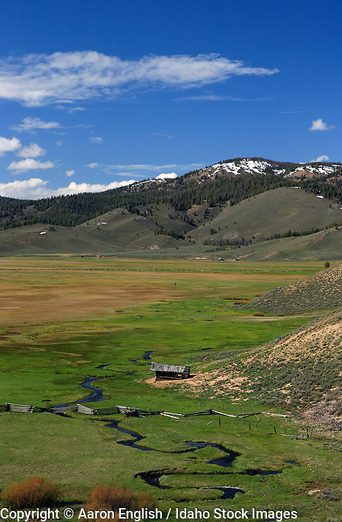 View of tributary to Valley Creek flowing through a meadow, Stanley, Idaho