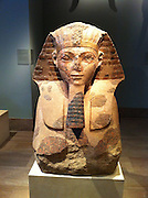 statue in Granite, of a sphinx showing the head and shoulders of Queen Hatshepsut. Circa 1473-1458 BC Egyptian. Found at the Temple of Deir el Bahri