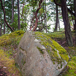 Stuart Island, San Juan Islands, Washington, US