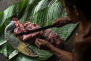 Hombre indígena Wounaan limpia la carne de una tortuga marina cazada durante una jornada de pesca.  Comunidad indígena La Chunga, Comarca Embera – Wounaan en la Provincia de Darién, Panamá.  La Chuga, ubicada en el  Rio Sambu, forma parte del corredor biológico de Bagres con sus inmensos bosques tropicales.