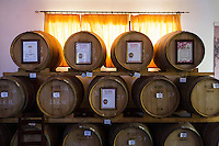 GUAGNANO, ITALY - 10 NOVEMBER 2016: Wine barrels are seen here in the wine house Feudi di San Guaganano, which offers its wines for the sommelier classes in the penitentiary of Lecce, in Guagnano, Italy, on November 10th 2016.<br /> <br /> Here a group of ten high-security female inmates and aspiring sommeliers , some of which are married to mafia mobsters or have been convicted for criminal association (crimes carrying up to to decades of jail time), are taking a course of eight lessons to learn how to taste, choose and serve local wines.<br /> <br /> The classes are part of a wide-ranging educational program to teach inmates new professional skills, as well as help them develop a bond with the region they live in.<br /> <br /> Since the 1970s, Italian norms have been providing for reeducation and a personalized approach to detention. However, the lack of funds to rehabilitate inmates, alongside the chronic overcrowding of Italian prisons, have created a reality of thousands of incarcerated men and women with little to do all day long. Especially those with a serious criminal record, experts said, need dedicated therapy and professionals who can help them.