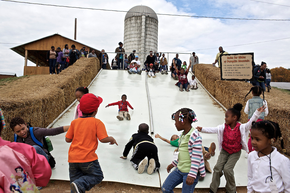 "Calvin Rodwell Elementary School Pre-kindergarten students start their field trip on a slide at Summers Farm in Frederick, MD on Oct. 24, 2012. The field trip was part of a ""Common Core"" reading and learning unit for their class, which aims to follow up non-fiction reading with learning in the field. The day prior the children read a book about going to a farm."