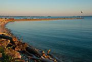 Lakeside Shoreline