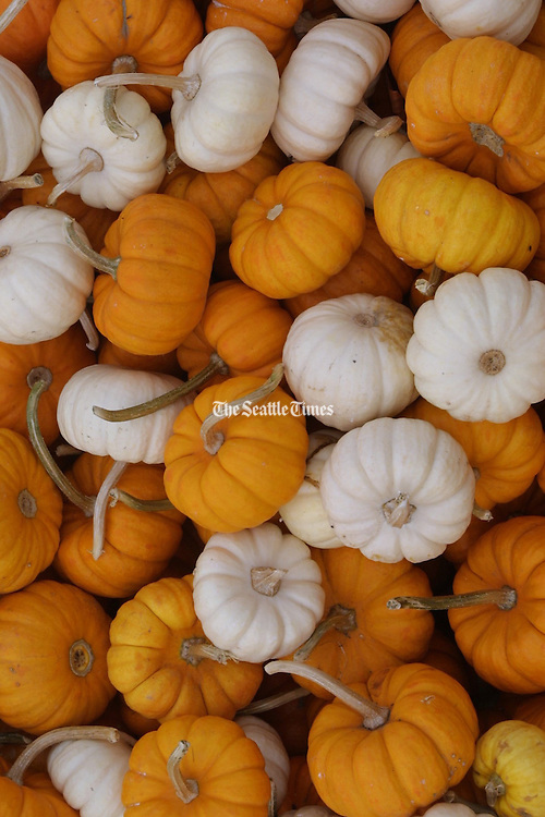 A mix of orange and white pumpkins for sale at the market.<br /> Ellen M. Banner / The Seattle Times