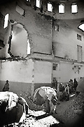 Refugees living in an old building close to the former parliament in the citycenter...