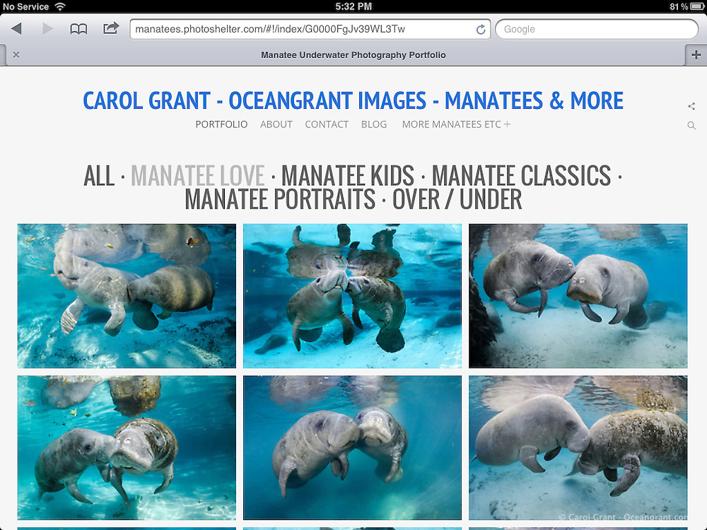 Screenshots of new Oceangrant.com Website using PhotoShelter's BEAM beta Shuffle template.