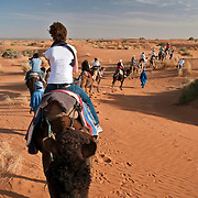 Tourists riding camels in the Sahara Desert, Morroco