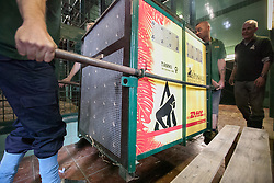 © London News Pictures. 23/06/2013. (EMBARGO UNTIL 24/06/13). Hythe, Kent. Keepers at Port Lympne Wild Animal Park in Hythe, Kent position a crate for Tamki the gorilla. A critically endangered western lowland gorilla family from Port Lympne Wild Animal Park are bound for Gabon in Africa as part of The Aspinal Foundation's Back to the Wild campaign. Djala, a 30 year old silverback, four mothers and four offspring embark on a unique 6,000 mile journey back to the wild courtesy of its partners DHL. Picture credit Manu Palomeque/LNP