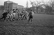 Spanghero, Dauga and Berejnoi grapple for the ball, ..Irish Rugby Football Union, Ireland v France, Five Nations, French team practice at College Park, Dublin, Ireland, Friday 22rd January, 1965,.22.1.1965, 1.22.1965,..Referee- D G Walters, Welsh Rugby Union, ..Score- Ireland 3 - 3 France, ..French Team, ..P Dedieu, Wearing number 15 French jersey, Full Back, A S Biterroise Rugby Football Club, France,. .J Gachassin, Wearing number 11 French jersey, Left Wing, F.C Lourdais Rugby Football Club, France, ..G Boniface, Wearing number 12 French jersey, Left Centre, Stade Montois Rugby Football Club, France,..J Pique, Wearing number 13 French jersey, Right Centre, S Paloise Rugby Football Club, France,..C Darrouy, Wearing number 14 French jersey, Right Wing, Stade Montois Rugby Football Club, France,..J Capdouze, Wearing number 10 French jersey, Stand Off, S Paloise Rugby Football Club, France,..L Camberabero, Wearing number 9 French jersey, Scrum Half, La Voulte Sportif Rugby Football Club, France,..J Berejnoi, Wearing number 1 French jersey, Forward, S C Tulliste Rugby Football Club, France,..J Cabanier, Wearing number 2 French jersey, Forward, U S Montalbanaise Rugby Football Club, France,..A Gruarin, Wearing number 3 French jersey, Forward, R.C Toulonnais Rugby Football Club, France,..W Spanghero, Wearing number 4 French jersey, Forward, R.C Narbonnais Rugby Football Club, France,..D Dauga, Wearing number 5 French jersey, Forward, Stade Montois Rugby Football Club, France,..M Lira, Wearing number 6 French jersey, Forward, La Voulte Sportif Rugby Football Club, France,..A Herrero, Wearing number 8 French jersey, Forward, R.C Toulonnais Rugby Football Club, France,..M Crauste, Wearing number 7 French jersey, Captain of the French team, Forward, F.C Lourdais Rugby Football Club, France, .